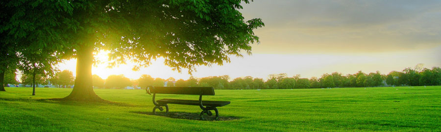 green-park-website-header-design-background.jpg | Communauté de ...