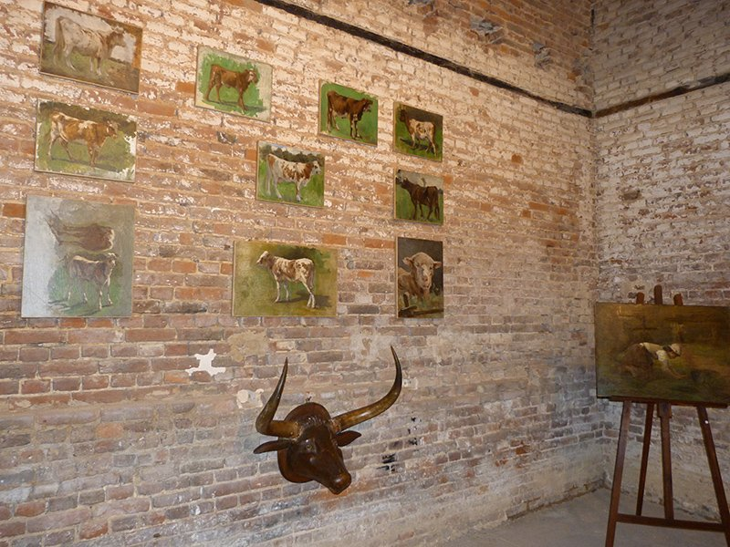exposition vache